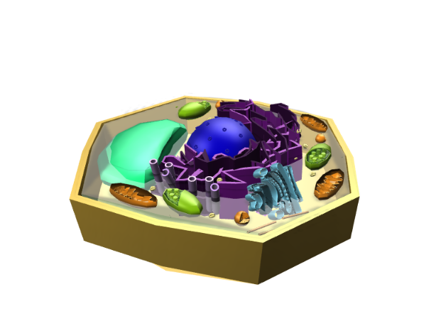 plant cell2 - 3D design by Kat on Sep 26, 2017