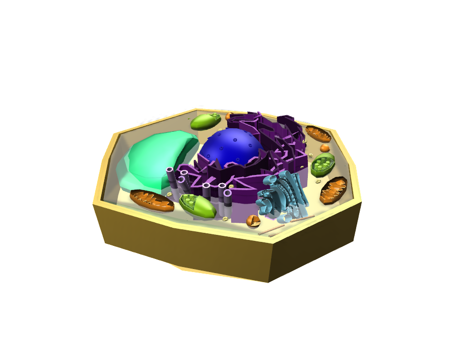 plant cell - 3D design by Kat Nov 12, 2017