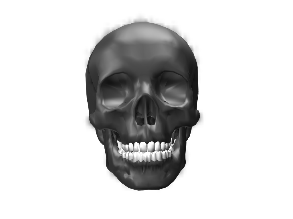 skull 2 - 3D design by Enter Inventive Studio Apr 2, 2018