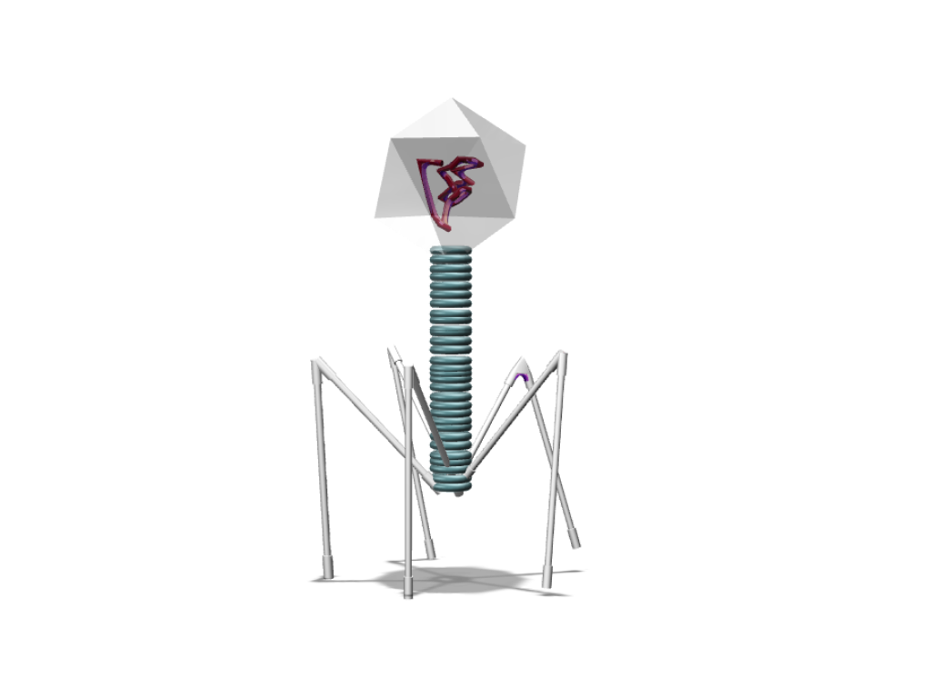 Phage - 3D design by M40V Oct 5, 2017
