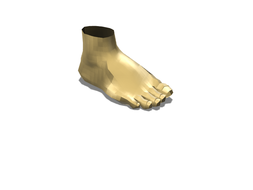 Foot - 3D design by jmarticio1 Sep 11, 2017