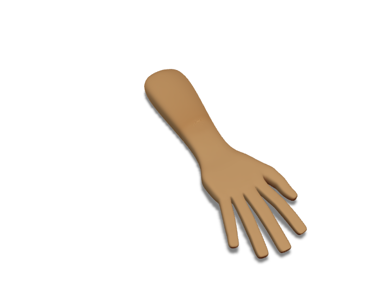Human arm - 3D design by slothsareawsome on Mar 22, 2018